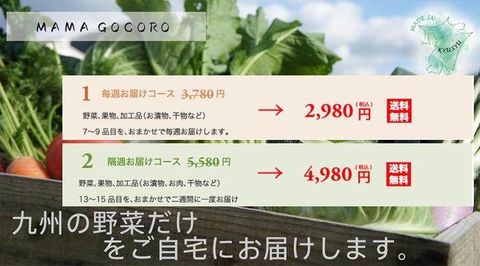 九州の野菜&食材宅配便【MAMAGOCORO】お試しセット